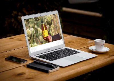 abejas candido 1 400x284 - Nuestros trabajos de Marketing Online